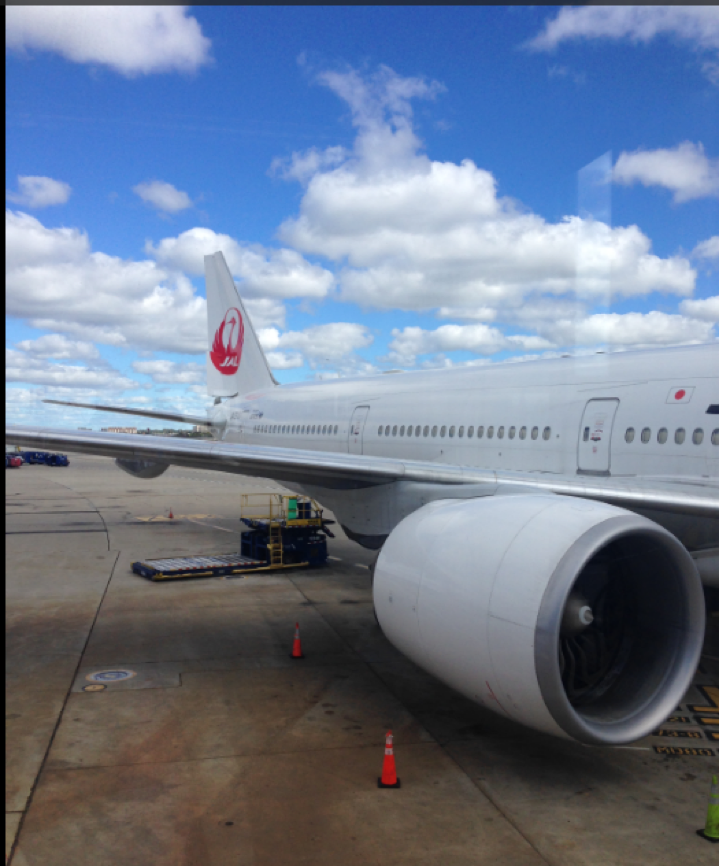 JAL-first-long-exp1